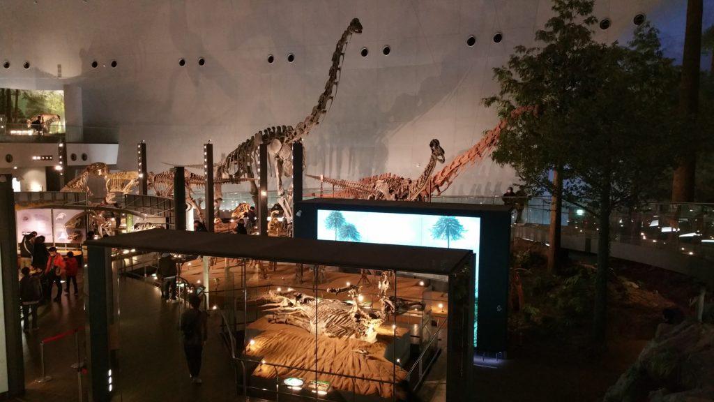 福井県立恐竜博物館内観全体