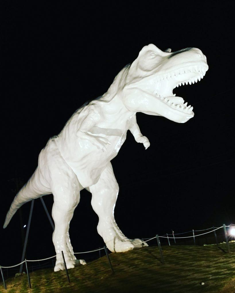 ホワイトサウルス夜