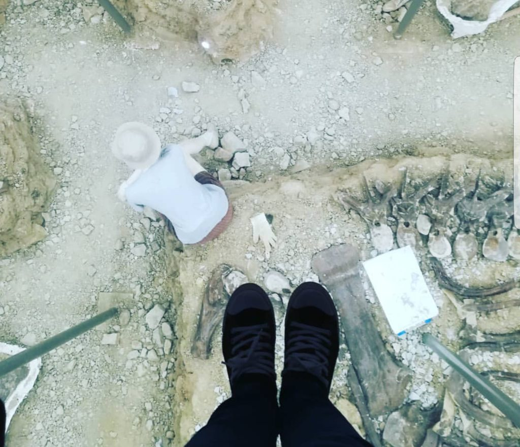 硝子の下は化石